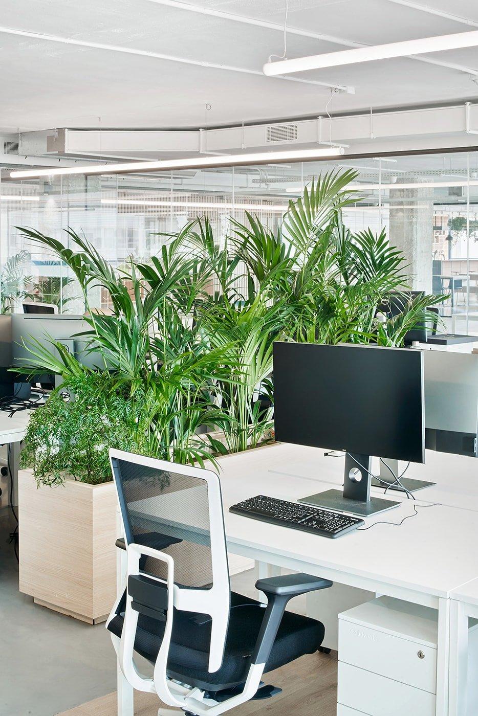 Desde un primer momento en Startup Hub Barcelona se fomentó la idea de gran espacio diáfano y visualmente continuo.