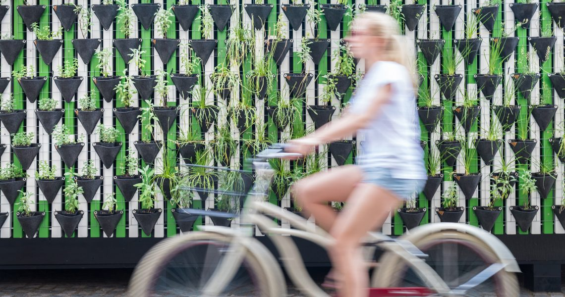 Motion,Blure,Of,Woman,Riding,Bycicle,By,Green,Urban,Vertical